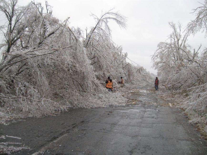 В Запорожской области обледеневшие деревья попадали на дороги (ФОТО), фото-2