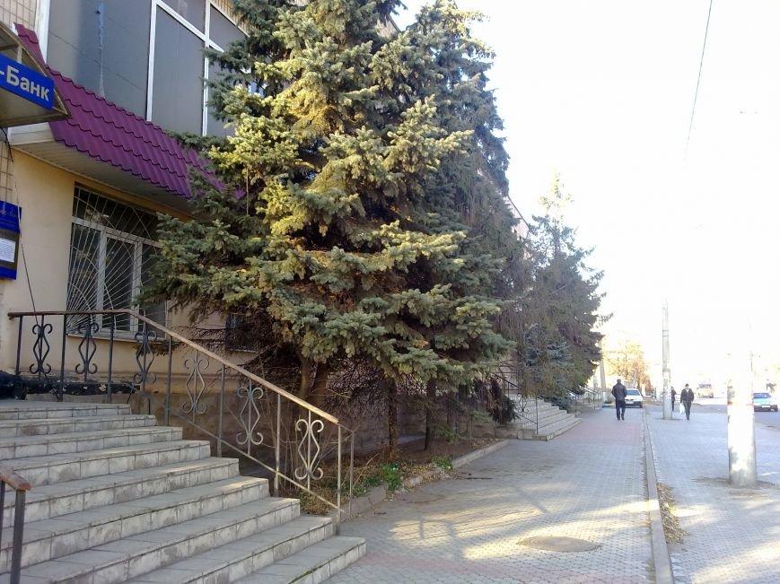 Криворожане мерзнут в квартирах и на работе, пока «голые» трубы обогревают улицу (ФОТОФАКТ), фото-3