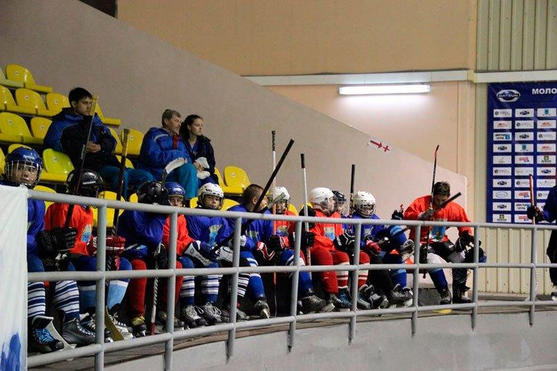 Болельщики МХК «Белгород» о тренерском штабе, игроках и положении клуба, фото-2