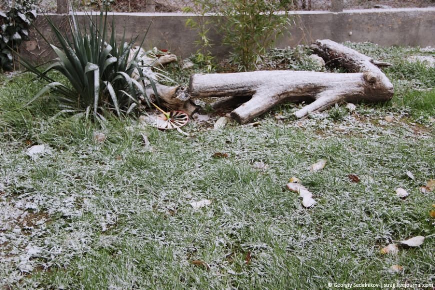 снег севас5