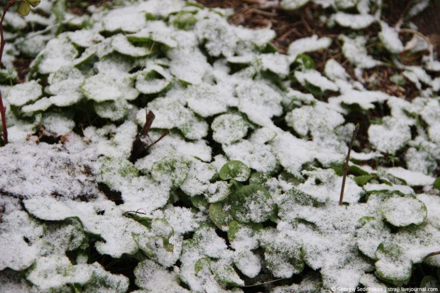 снег севас3