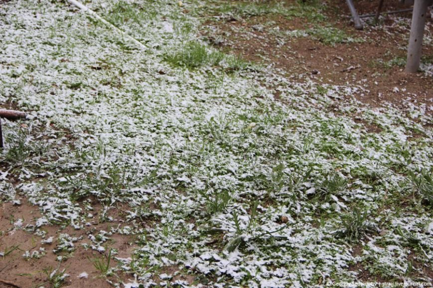 снег севас2