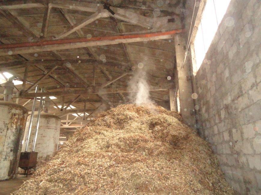В Мариуполе  бесплатные дрова получили 90 социально незащищённых семей и военные (ФОТОРЕПОРТАЖ) (фото) - фото 1