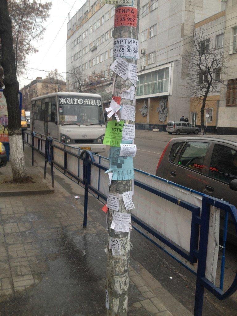 У Житомирі активісти провели акцію «Люби своє місто» (фото) - фото 1
