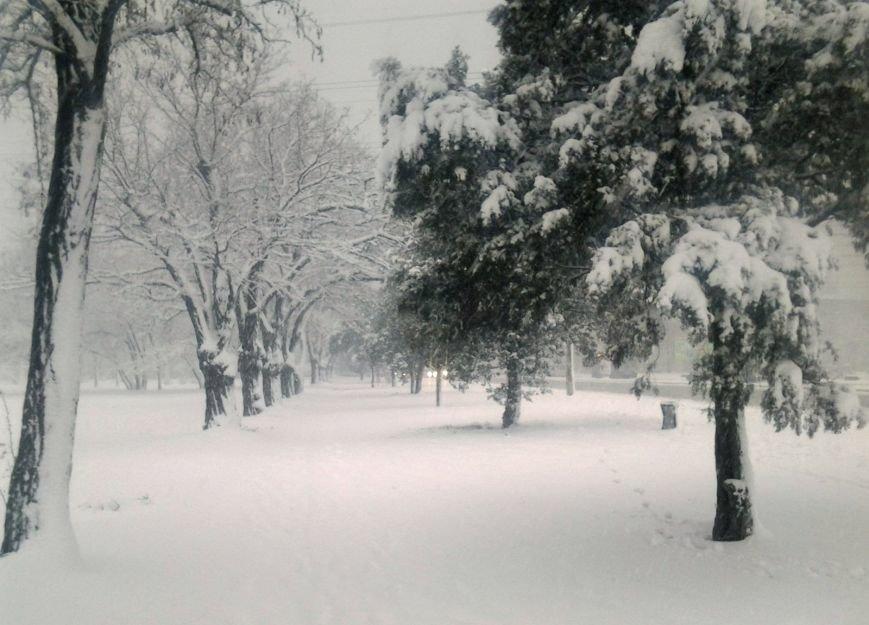 ФОТОРЕПОРТАЖ: Запорожье замело снегом, фото-33
