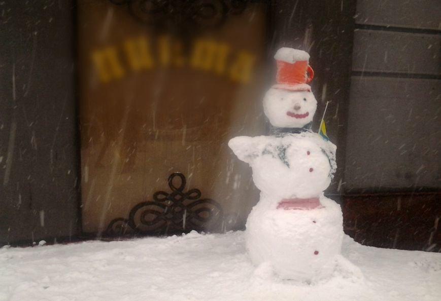 ФОТОРЕПОРТАЖ: Запорожье замело снегом, фото-28