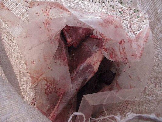 В Мостовском районе нашли охотника за черепами животных (Фото), фото-1