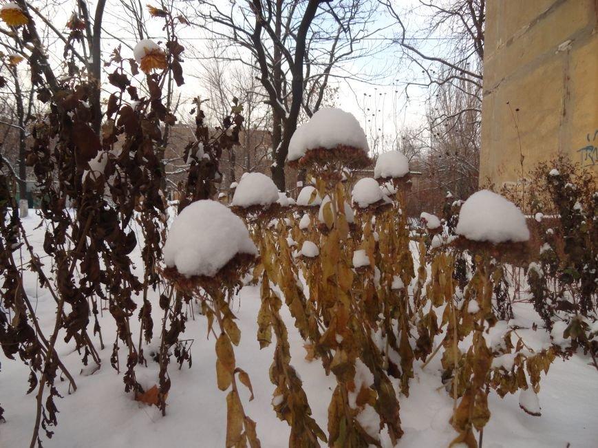 В Мариуполь пришла настоящая зима (ФОТОРЕПОРТАЖ) (фото) - фото 6