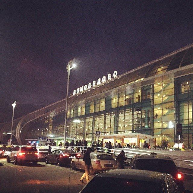 Две кражи раскрыты транспортной полицией в аэропорту Домодедово (фото) - фото 1