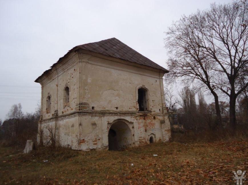 Активисты приступили к спасению уникального исторического памятника в Черниговской области (фото) - фото 3