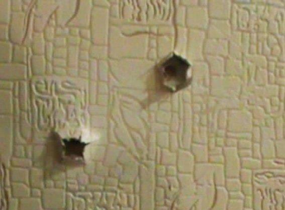 Кировоградец с пистолета стрелял в квартире по стенам (фото) (фото) - фото 1