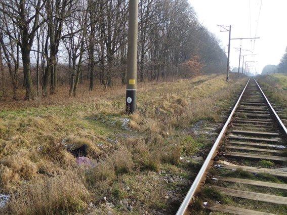 На Львівщині матір і донька потрапили під потяг (ФОТО) (фото) - фото 2