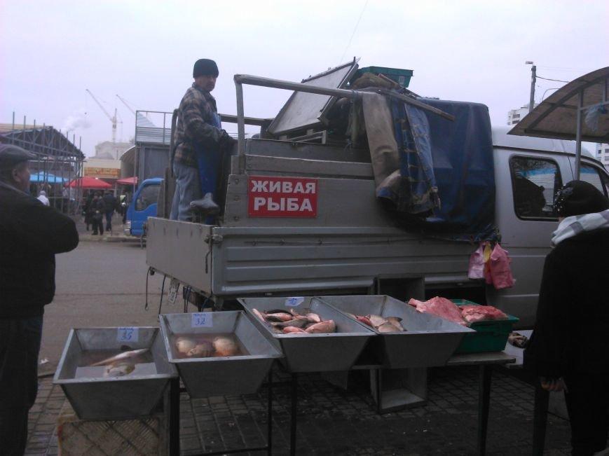 Мясо с асфальта: одесская милиция оказалась беспомощной перед стихийной торговлей (ФОТО), фото-2