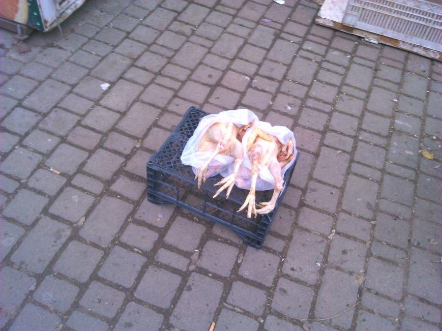 Мясо с асфальта: одесская милиция оказалась беспомощной перед стихийной торговлей (ФОТО), фото-3