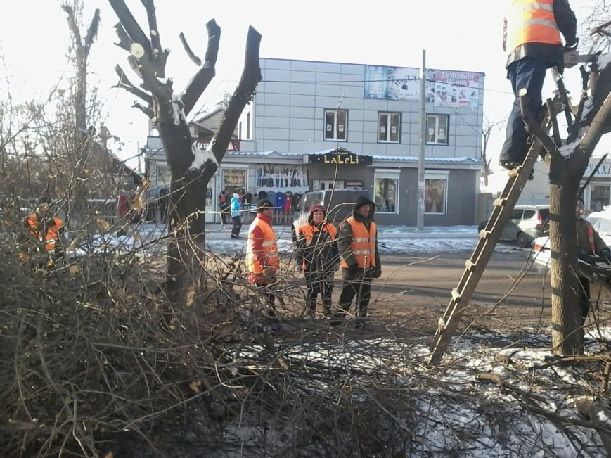 В Красноармейске на центральной улице проводится обрезка деревьев (фото) - фото 1