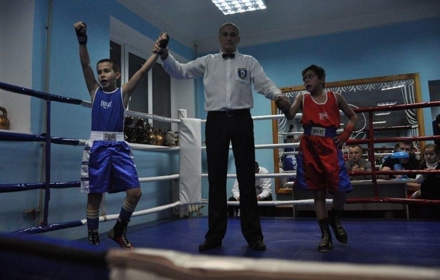 В Соледаре состоялся областной турнир по боксу, фото-1