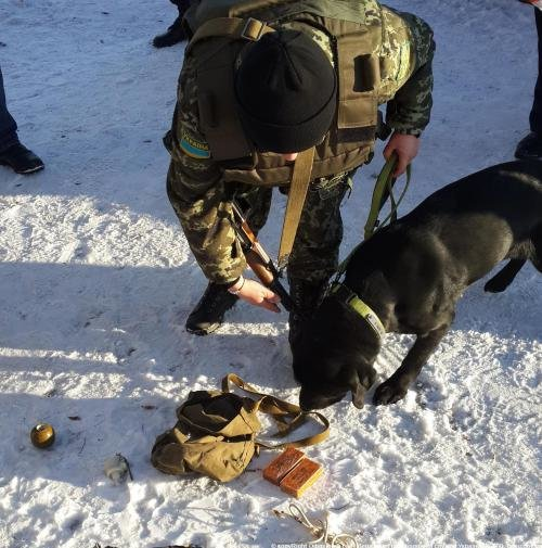 Взрывчатку на железнодорожном вокзале в Мариуполе нашел четвероногий пограничник (ФОТО), фото-2