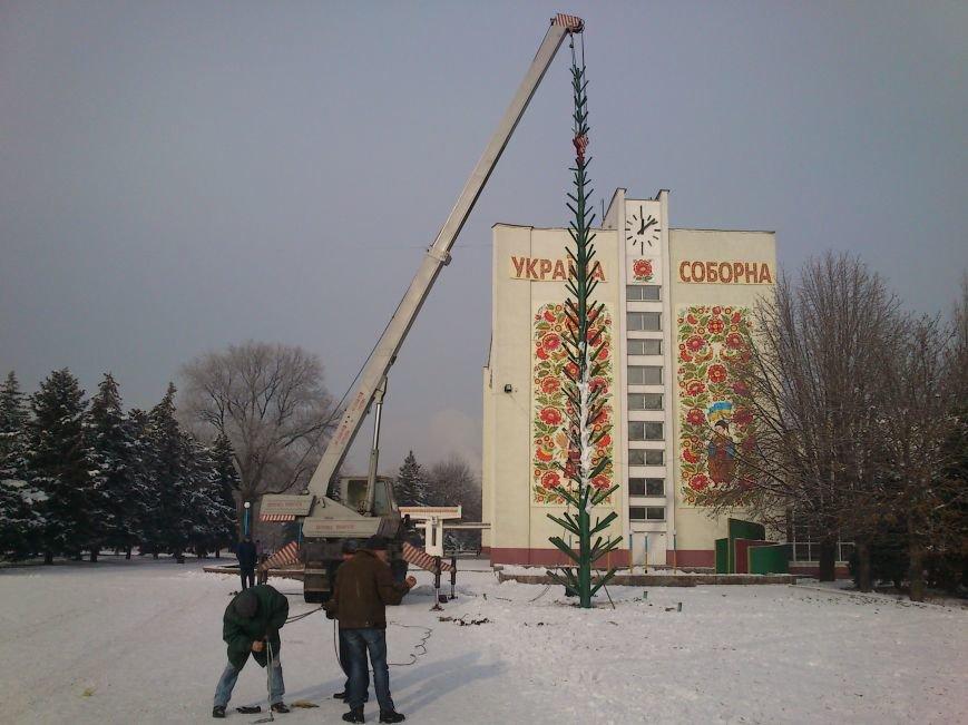 В Днепродзержинске начали устанавливать городскую новогоднюю елку, фото-1
