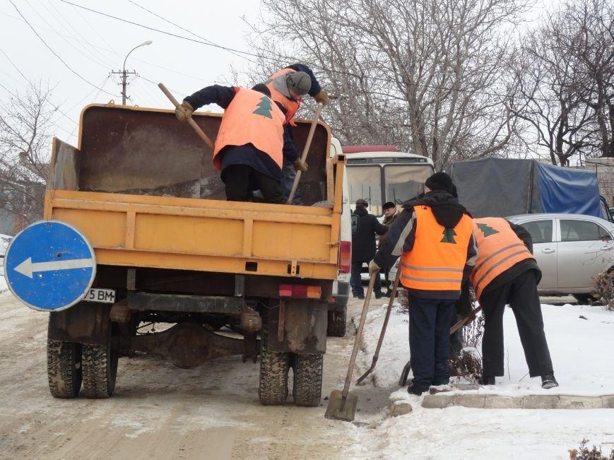 В Зеленстрое Мариуполя рассказали о причинах «ледового побоища» (ФОТО+ВИДЕО) (фото) - фото 1