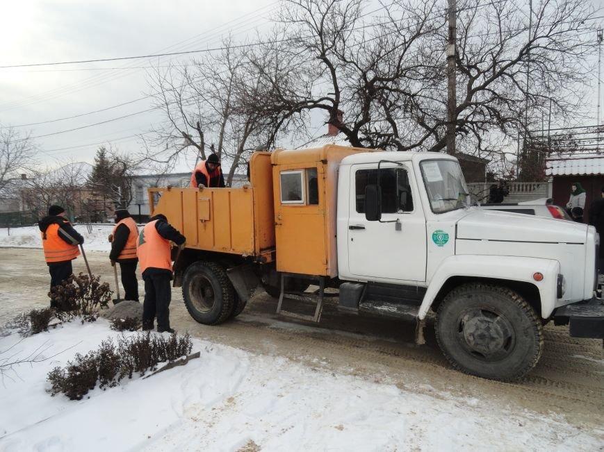 В Зеленстрое Мариуполя рассказали о причинах «ледового побоища» (ФОТО+ВИДЕО) (фото) - фото 2
