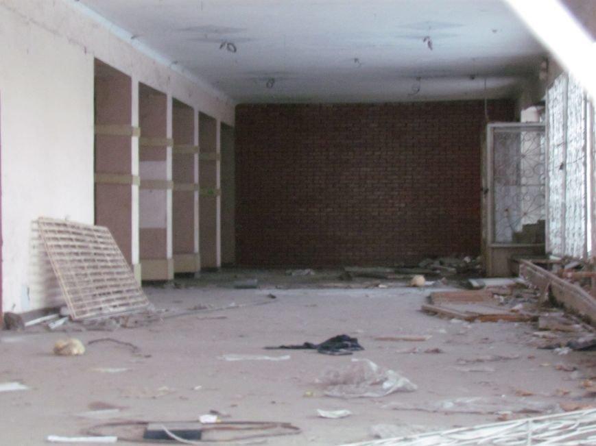 В Мариуполе элитный советский магазин превратился в «кошкин дом» (ФОТОФАКТ), фото-9