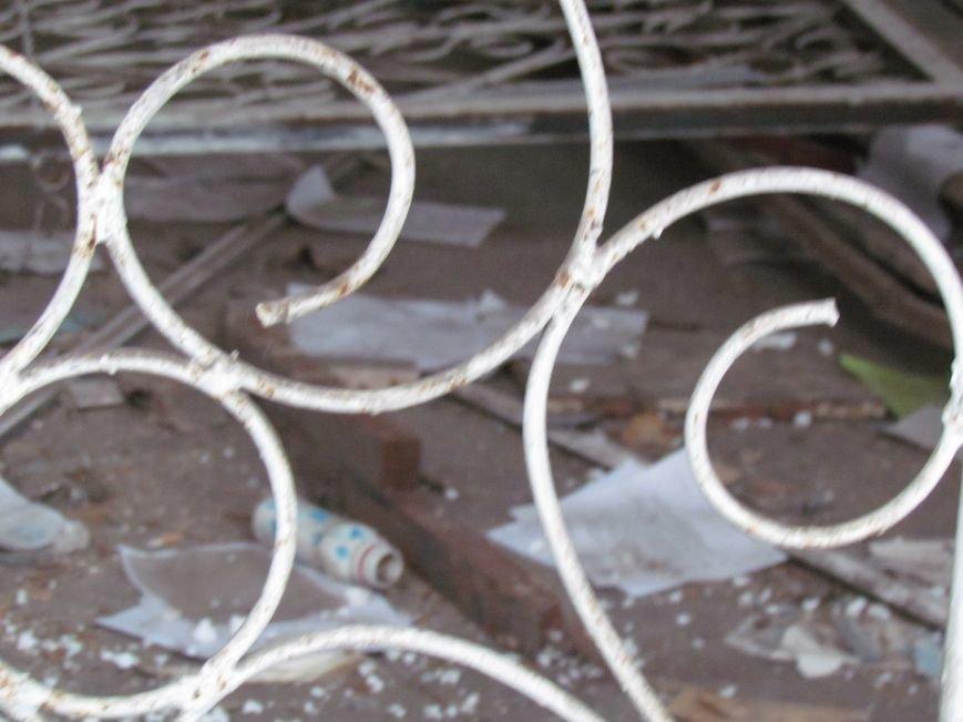 В Мариуполе элитный советский магазин превратился в «кошкин дом» (ФОТОФАКТ), фото-6