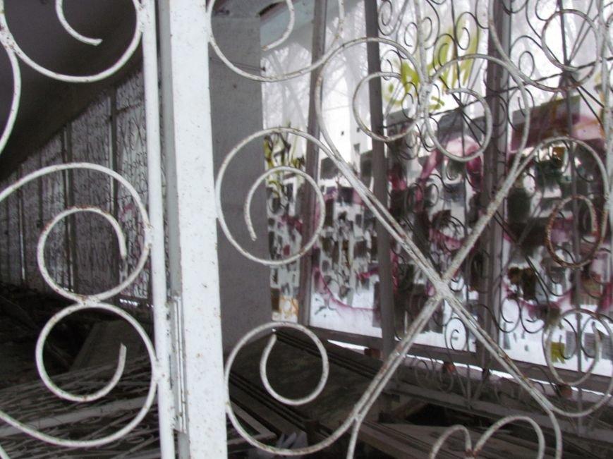 В Мариуполе элитный советский магазин превратился в «кошкин дом» (ФОТОФАКТ), фото-7