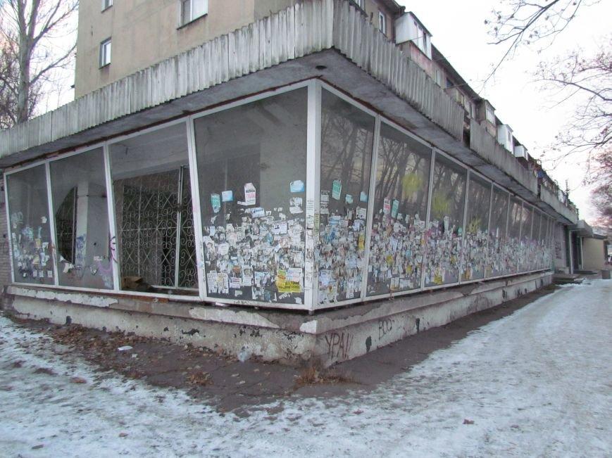 В Мариуполе элитный советский магазин превратился в «кошкин дом» (ФОТОФАКТ), фото-1