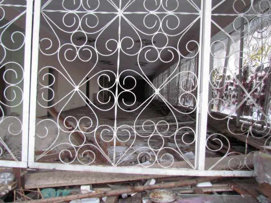 В Мариуполе элитный советский магазин превратился в «кошкин дом» (ФОТОФАКТ), фото-2