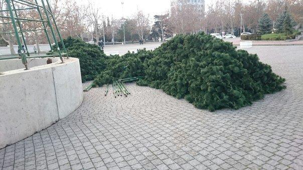 Главная елка Севастополя, как и в с столице, будет искусственной (ФОТО) (фото) - фото 1