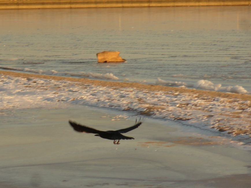 Фотопятница: «Всем влюбленным в наше море» (фото) - фото 14