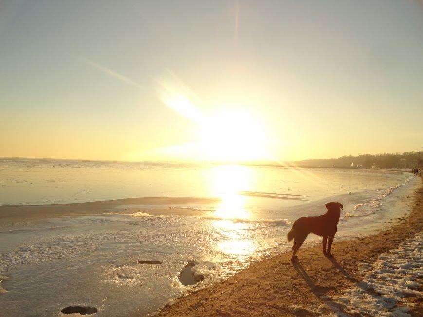 Фотопятница: «Всем влюбленным в наше море» (фото) - фото 13
