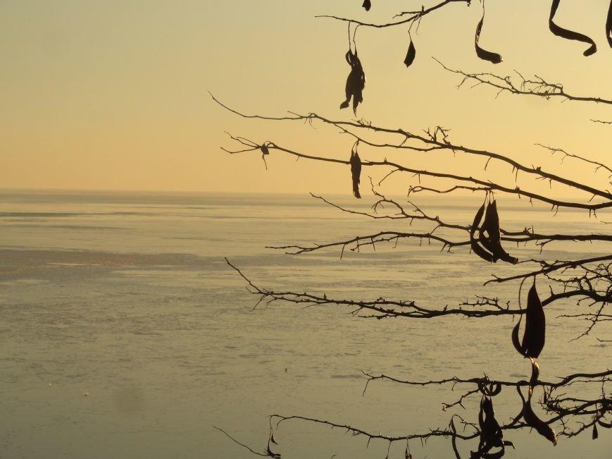 Фотопятница: «Всем влюбленным в наше море» (фото) - фото 18