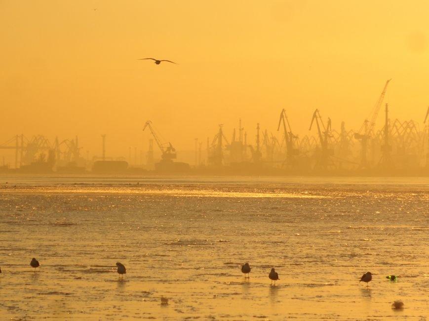 Фотопятница: «Всем влюбленным в наше море» (фото) - фото 1