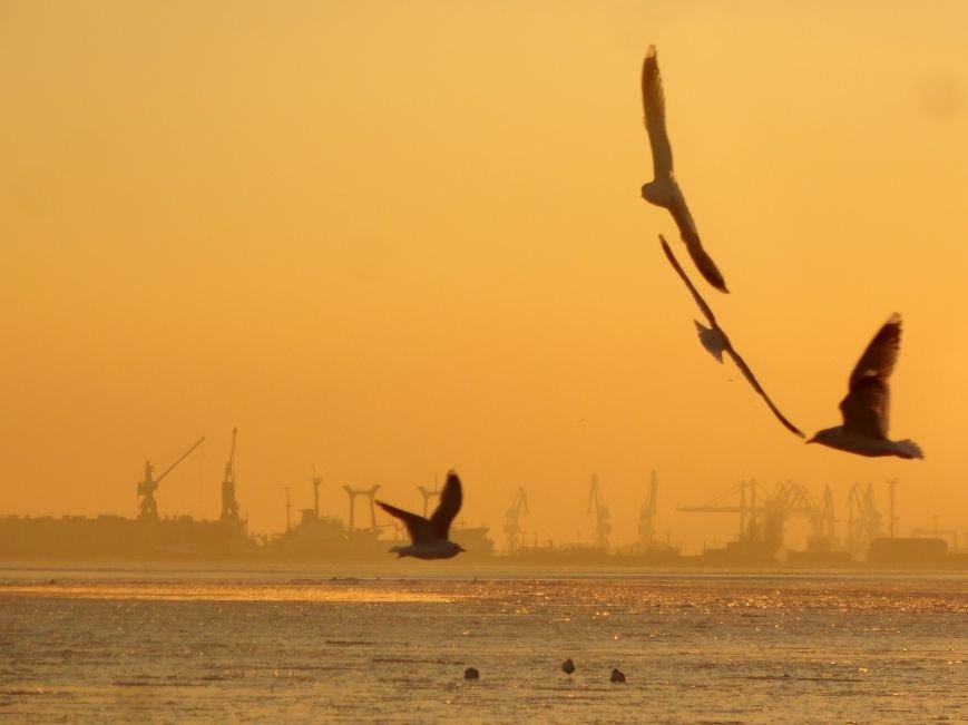 Фотопятница: «Всем влюбленным в наше море» (фото) - фото 26