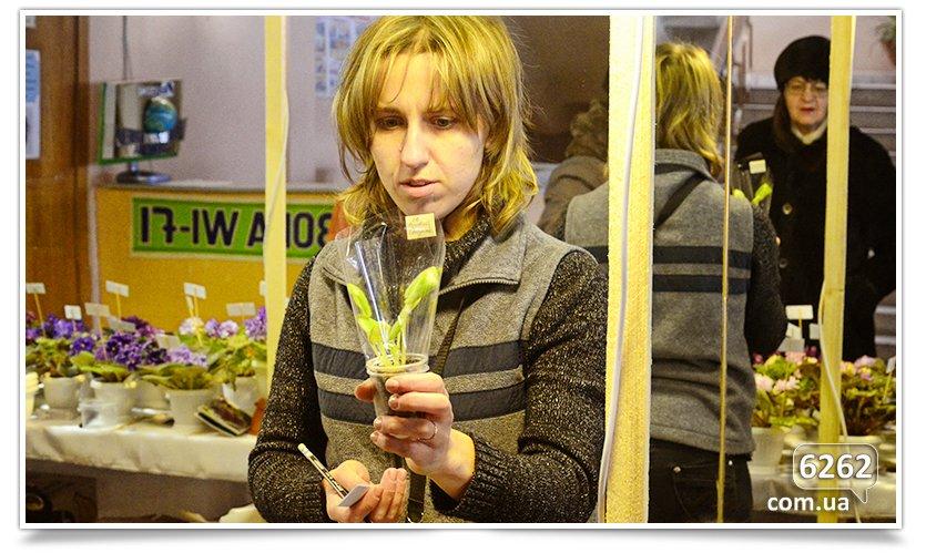 Зимняя выставка фиалок в Славянске (фото) - фото 6