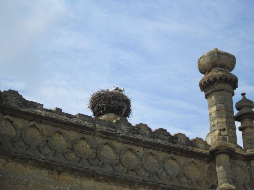 Одесса incognita: Замок Курисов (ФОТО) (фото) - фото 7