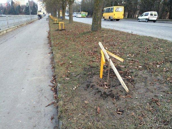 Біля Тернопільського озера вандали зламали парканчик, яким обгородили каштан (фото) - фото 1