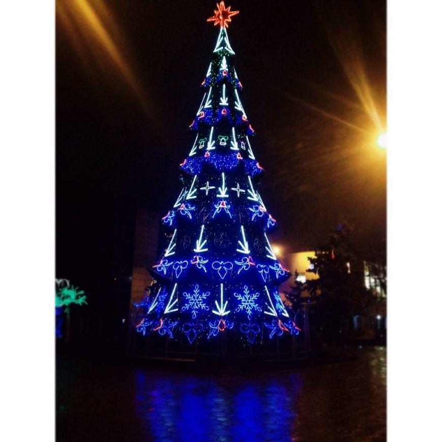 В Ильичевске зажглась главная елка города (ФОТО) (фото) - фото 1