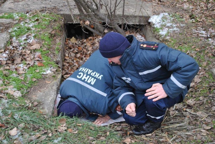 Одесские спасатели достали из глубокой канавы новорожденных щенков (ФОТО) (фото) - фото 1