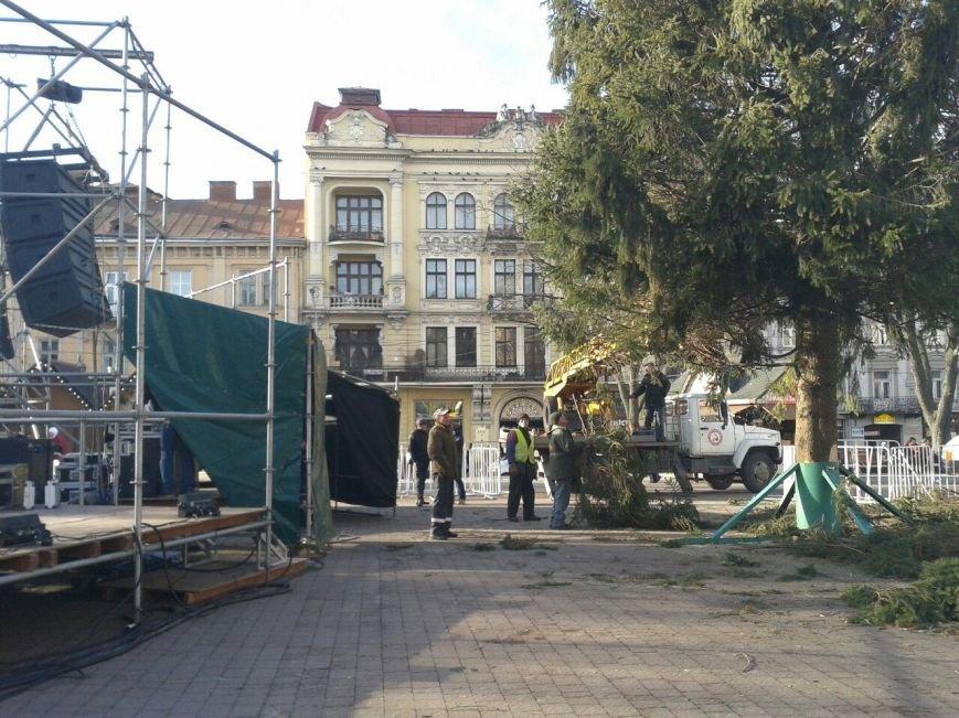 Головна ялинка Львова уже в центрі (ФОТО) (фото) - фото 1