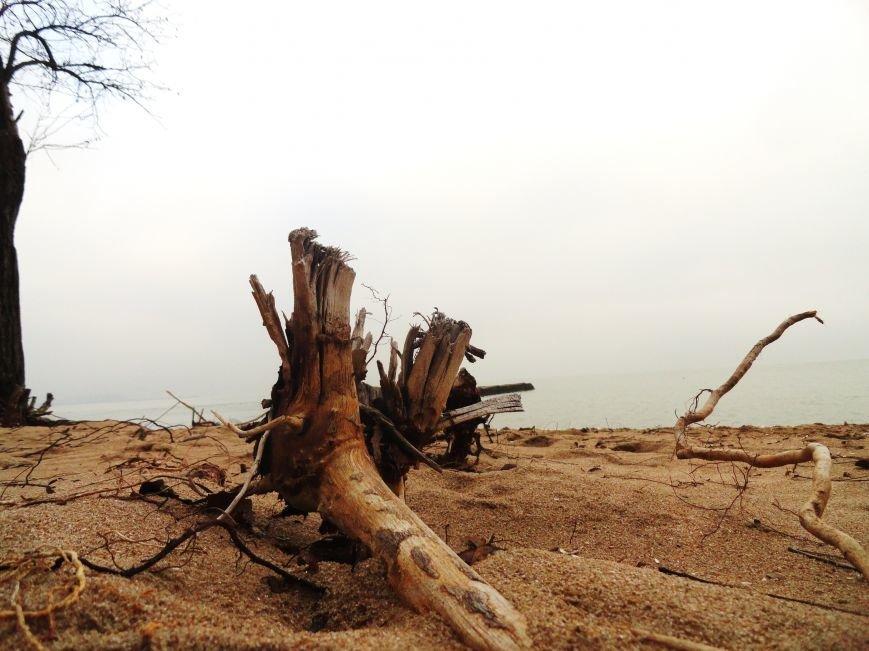 В Мариуполе на побережье ледоход (ФОТОФАКТ) (фото) - фото 5