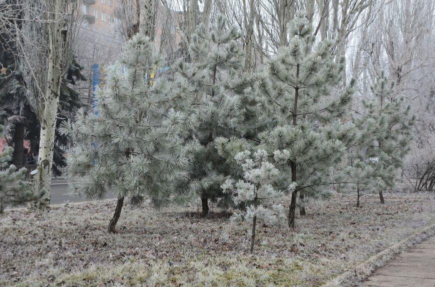 В Мариуполь пришла белоснежная сказка (ФОТО), фото-7