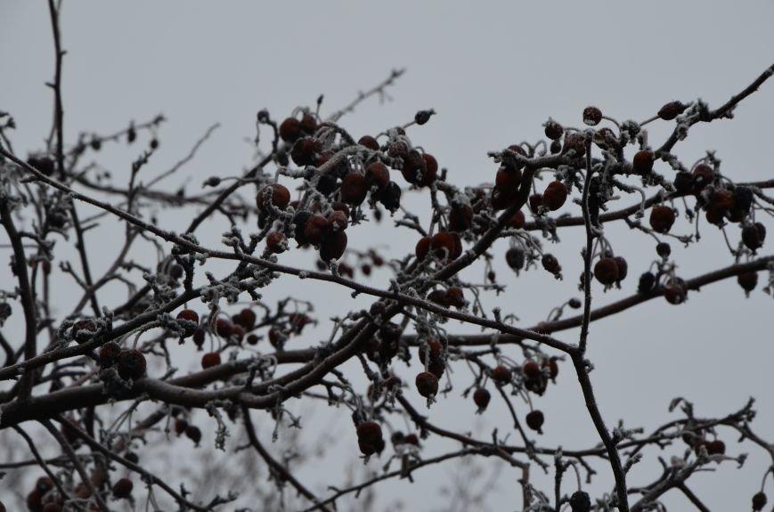 В Мариуполь пришла белоснежная сказка (ФОТО), фото-8