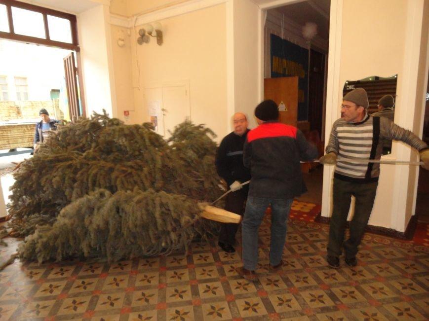 Новогодняя елка оказала сопротивление при установке в Мариуполе (ФОТОРЕПОРТАЖ) (фото) - фото 1