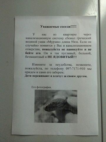 Насмешили: В одесском подъезде предупреждают, что из туалета может вынырнуть уж (ФОТО) (фото) - фото 1