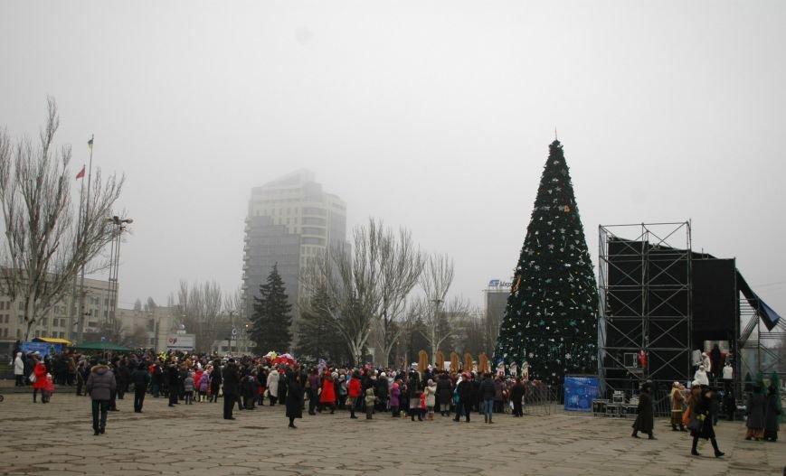 В Запорожье торжественно открыли центральную новогоднюю ёлку (ФОТО), фото-1