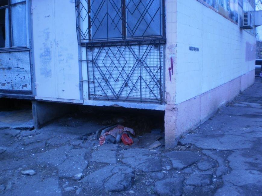 Криворожане платят теплоснабжающим предприятиям за обогрев ... бездомных щенков  (ФОТОФАКТ) (фото) - фото 1