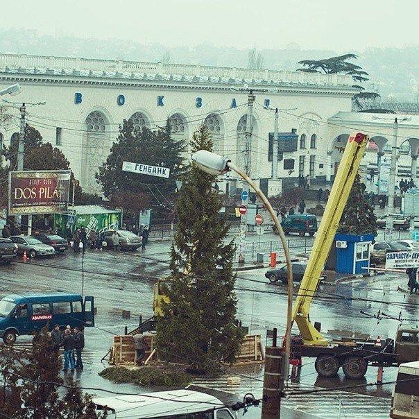 ФОТОФАКТ: Новогодний подарок из Карелии в Симферополе пришлось устанавливать под дождем (фото) - фото 1