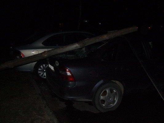 Возле строящегося магазина на ул. Брикеля столб электроснабжения упал на автомобиль (Фото), фото-3